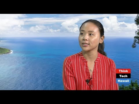 The Best Online Tools To Attract Tourist To Hawaii (Think Tech Tech Talks)