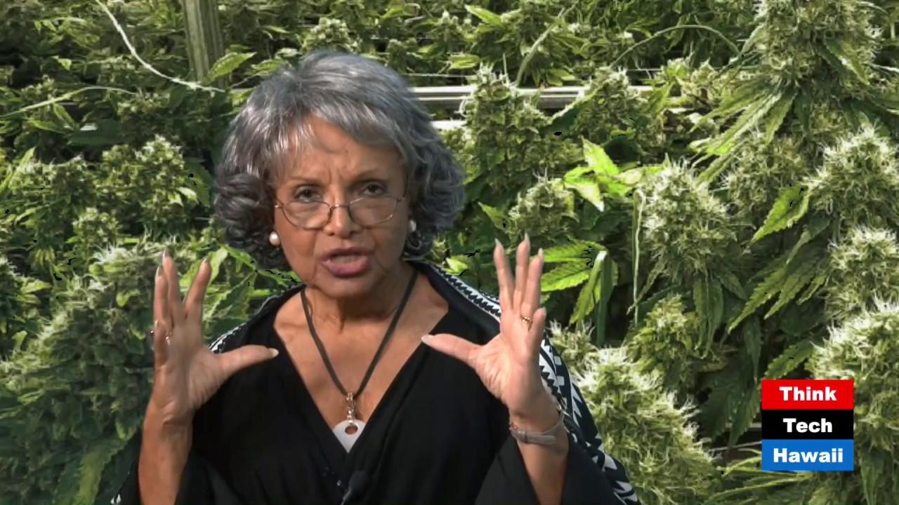 Hemp and Hawaii Bioeconomy (Cannabis Chronicles)