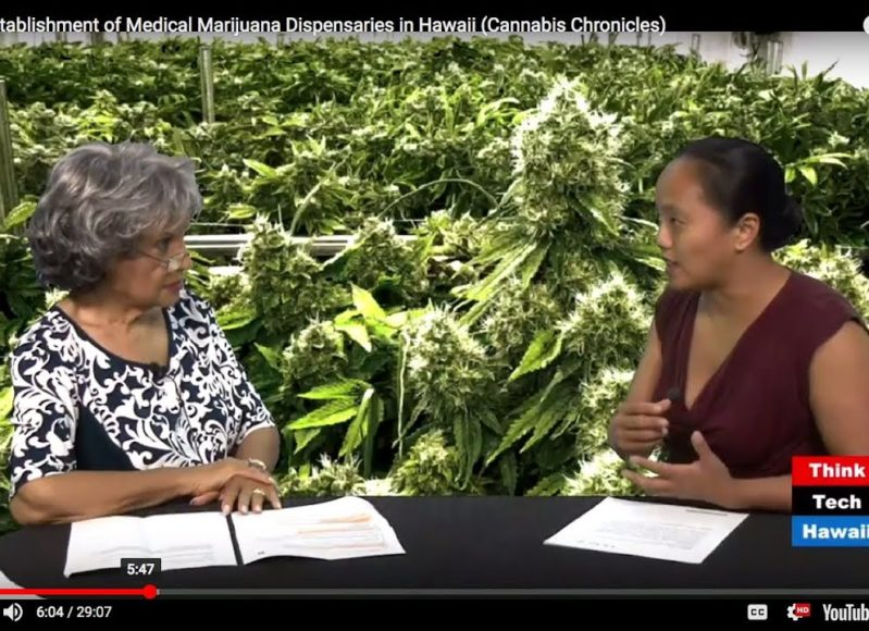 The-Establishment-of-Medical-Marijuana-Dispensaries-in-Hawaii-Cannabis-Chronicles-attachment