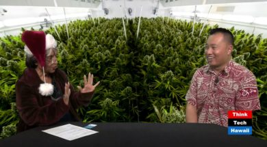 The-first-company-provides-credit-card-processing-cannabis-services-in-Hawaii.-Cannabis-Chronicles-attachment
