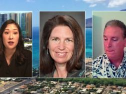 The-Small-Business-Regulatory-Review-Board-Business-In-Hawaii-attachment