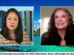Business-setup-tips-with-Nancy-Grekin-Business-in-Hawaii-attachment