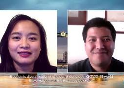 Economic-diversification-in-the-current-and-post-COVID-19-world-Business-In-Hawaii-attachment