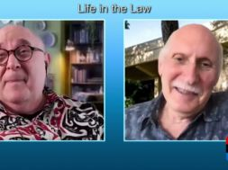 Is-the-Constitution-Working-Life-In-The-Law-attachment