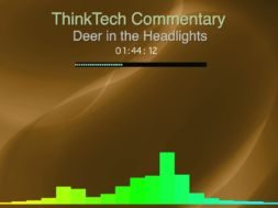 Commentary-Deer-in-the-Headlights-attachment